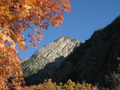 Fall Foliage 2009 037