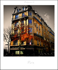 674 Paris (Nebojsa Mladjenovic) Tags: light urban house france tree architecture digital polaroid outdoors lumix panasonic maison arbre soe fz50 selectivecoloring svetlost abigfave mladjenovic mygearandmepremium mygearandmebronze mygearandmesilver mygearandmegold mygearandmeplatinum mygearandmediamond mygearandmeplatinium