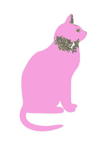 stardust-pink-cat