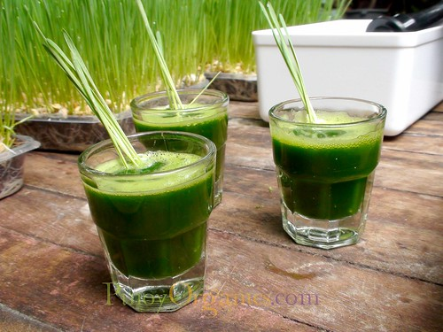 sweetest wheatgrass