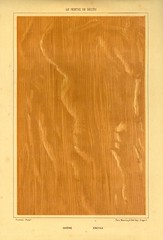 decors bois 8