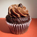 Curbside Chocolate Cupcake