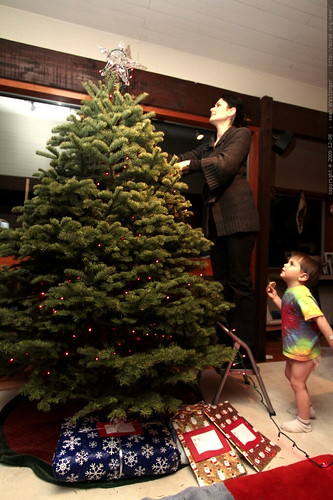 sequoia coaches rachel on her xmas tree decorating - _MG_0184.embed
