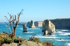 The Apostles (jarrado) Tags: d50 coastline 12apostles cliffface