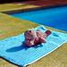 Naked hippo toy sunbathing by pool ?! , Majorca