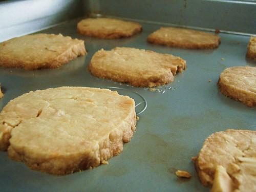 macadamia nut shortbread - 22