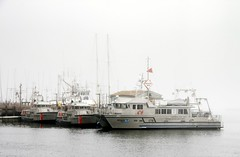 100904_1700490 (cmrowell) Tags: california coastguard fog boats boat fulmar morrobay noaa mlb uscg motorlifeboat noyoriver 47280 47292 nationalmarinesanctuaries r6701 sanmartintop0906