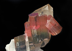 Elbaite on Quartz (Ron Wolf) Tags: california nature crystal hexagonal mineral geology quartz gem tourmaline earthscience gemstone elbaite mineralogy cyclosilicate
