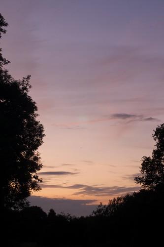 Lavender Sunset 4+5/07/2009