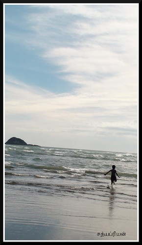 Muriwai Beach