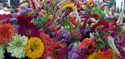 Colorful Flowers @ Farmers Market