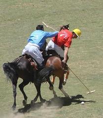 Dangerous Game (HR.Niazi) Tags: pakistan horses horse game sports dangerous pony polo soe gilgit shandur chitral theunforgettablepictures husnain67