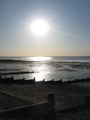 Spot the oysters (JB photographer) Tags: thames coast kent seaside shingle estuary explore whitstable sheppey seasalter swale theworldisbeautiful copyrightjonathanbarkerphotographer