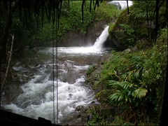 Waterfall Right Out Our Window