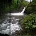 Wayanad waterfall