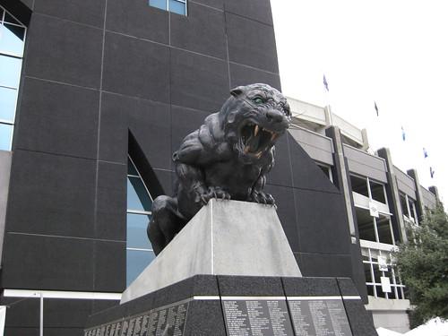 Panther at Bank of America Stadium