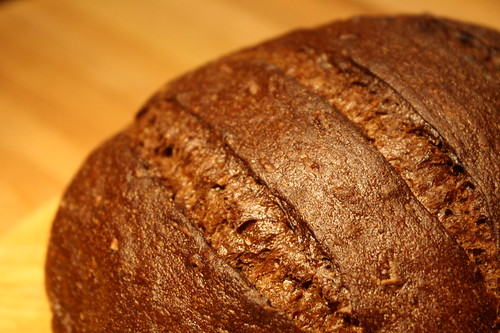 310/365 - pumpernickel