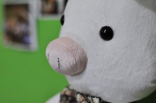 豬兔子的豬鼻子