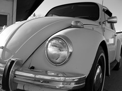 german bug (frankieleon) Tags: auto blackandwhite bw car vw bug interestingness interesting bestof cc german creativecommons popular 1972 volkswagon frankieleon