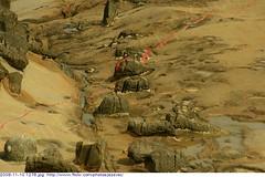 2009-11-10 1276 - Yeliou Scenic Area (Weathered rock erosion)  Wanli township, Taiwan (Badger 23 / jezevec) Tags: roc rocks stones scenic taiwan formation national area hoodoo geology formosa  2009 kina  rocas loan roches yeliu felsen wanli rotsen geological yehliu rochas  roccie  geopark   republicofchina guanyinshan yeliou     republikken   tajwan  tchajwan i    badger23 20091110 republikchina thivn  taivna tavan