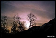 Valle de Pineta (Marc Boix) Tags: sky espaa naturaleza mountain nature montagne canon landscape arbol spain huesca arboles natural natur cel natura paisaje arbres cielo marc aragon montaa espagne baum muntanya spanien spagna paisatge contrallum pirineu espanya pirineoaragones bielsa valledepineta boix naturalesa gnneniyisi eos1000d flickraward marcboix