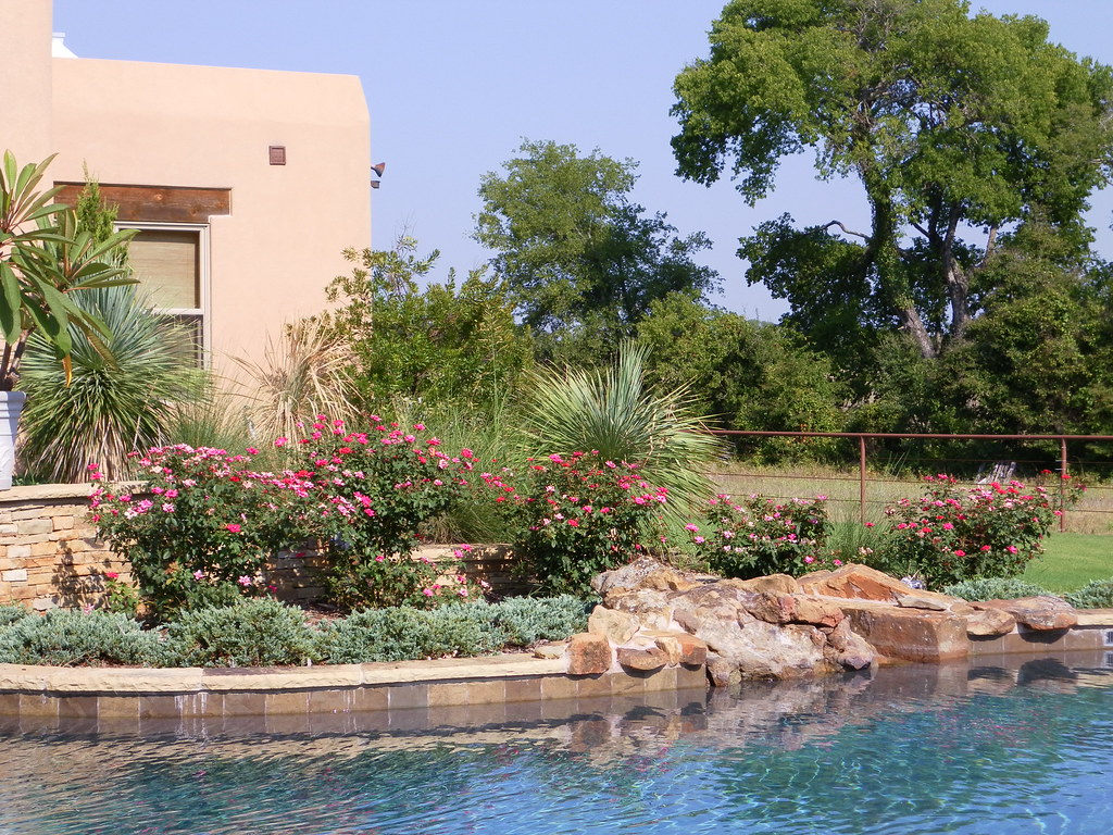 The world 39 s best photos by landscape design denton for Garden near pool