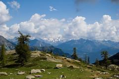 Ampi panorami...(Parco Regionale del Mont Avic, Valle d'Aosta) (Sisto Nikon - CLICKALPS PHOTOGRAPHER) Tags: macro fauna montagne trekking flora estate natura monterosa monte ao sentiero alpi paesaggi montagna vette paesaggio monti luglio cime valledaosta lacblanc ranatemporaria camminare escursionismo escursione sentieri torbiere valléedaoste alpigraie naturalistica parcoregionaledelmontavic valledichampdepraz rifugiobarbustel valledeltorrentechalamy violacalacarata monteiverta