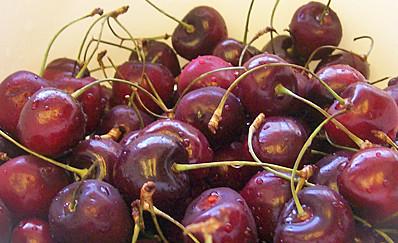 drying cherries 1