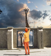 Noah's Travel Agency (h.koppdelaney) Tags: life africa noah travel art digital photoshop amazing different symbol dream surreal philosophy humour dreaming agency stunning reality hallucination giraffe amazement awareness metaphor lucid ark dimension goggle madagascar consciousness symbolism mailman psychology arche astonish hourofthesoul