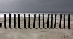Standing in a Line (Pommysheilah) Tags: sea beach fence sand wind westsussex windy westwittering easthead blowingsand woodenposts standinginaline