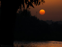 sunset at Dijla (Younis M.) Tags: sunset beautiful true amazing iraq cybershot mosul dijla younis h50  dsch50