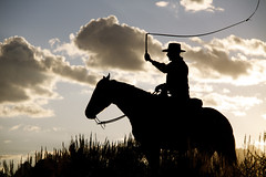 TJ with whip (halfgreek2000) Tags: sunset silhouette cowboys tj grandtetonnationalpark trianglexranch
