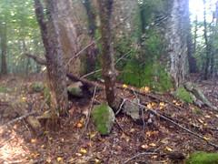 Rock Piles 3