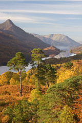 Autumn Colours at Kinlochleven (David Kendal) Tags: autumn autumncolours kinlochleven lochleven papofglencoe scottishlandscape greymarestail scotlandinautumn scottishview