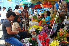 flowerstall (Stèphanie`s dad) Tags: flowers market philippines blumen cebucity bloemen bulaklak cebusugbo teampilipinas carbonmarket philippineislescom