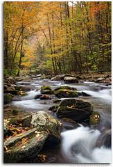 Autumn at Laurel Creek (Frank Kehren) Tags: autumn fall canon river tennessee f11 smokymountains laurelcreek 24105 ef24105mmf4lisusm canoneos5dmarkii