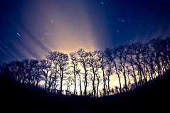 (richardmontalbano.com) Tags: longexposure trees stars fisheye explore startrails meteorshower