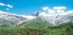 Wandern im Zillertal (vital-central) Tags: hotel sommer central tux zillertal vital tuxertal