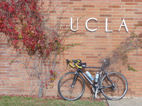 UCLA Entrance on Westwood Blvd P1000310