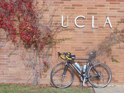UCLA Entrance on Westwood Blvd P1000310