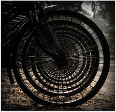 Concentric Circles???!!! (chatter.nik) Tags: circle spokes rickshaws concentric tyre uniformity