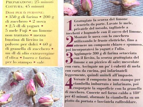 collage3Ciambella allo yogurt e olio d'oliva