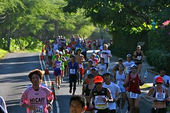Scene from Honolulu Marathon