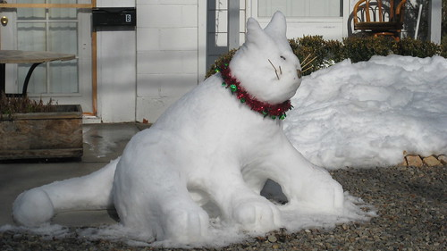 snow kitty 2009 002
