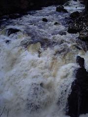 PICT0027 (Stevie Yates) Tags: hermitage dunkeld the braan