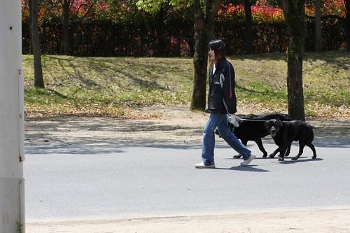 のんびりと・・・ / With her dogs