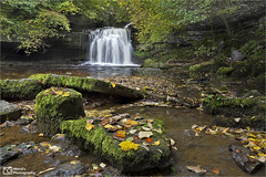 Autumnal cauldron falls, Yorkshire Dales National Park. UK. (Wend's photography) Tags: autumn autumnal atmosphere britain dales england english lee landscape longexposure le northyorkshire outdoor rural scenery photography uk unitedkingdom waterscape waterfall wensleydale yorkshire yorkshiredales yorks