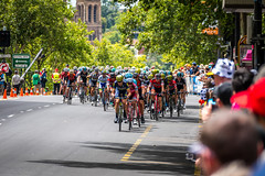 The Peloton - A Few Laps Remaining (Serendigity) Tags: stage6 tourdownunder 2017 australia race sa southaustralia adelaide tdu cycling event