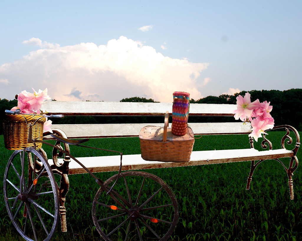 pink-saturday-picnic-bench