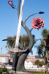 Rosa y espada (Darkmelion) Tags: españa coruña galicia paseomaritimo d90 burgo espa coru espaa corua